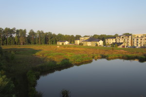 Park West Village wetland